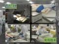 鳕鱼加工技术 (1247播放)