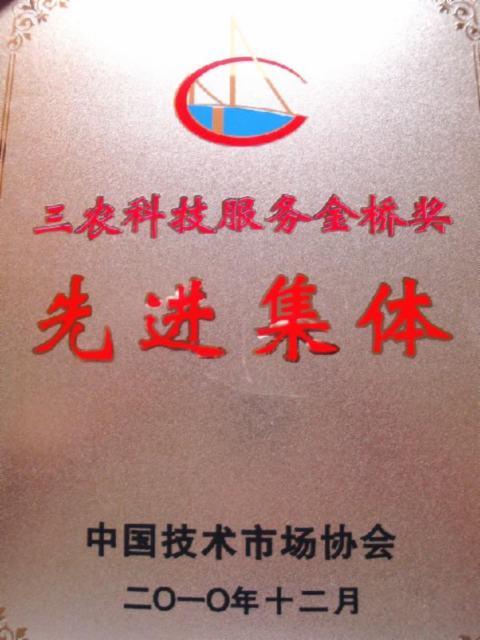 中国市场协会先进
