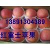 陕西冷库红富士苹果产地最新价格\嘎啦苹果\花冠苹果销售价格