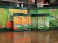 银溪绿茶图片