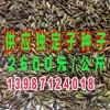 2015年中国广州国际渔业博览会