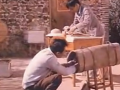 蜜蜂如何养殖能高产_三农网 (2801播放)