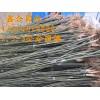供应2、3、4、5公分速生白蜡、速生国槐、榆树
