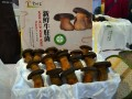 牛肝菌—热带雨林走出的绿色环保产品