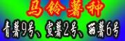 云南寻甸商品薯公司