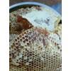丽江蜂蜜生产基地@云南丽江蜂蜜价格表(图片)