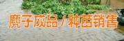 麂子养殖网(图片)*种苗