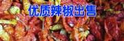 新云南干辣椒批发市场报价_400-6633-626