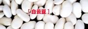 产地白芸豆供求信息