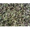 适合云南种植的金铁锁种子供应商_金铁锁种植基地直销种子