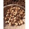出售优质食用百合种子、成品:种子40/kg,成品30/kg