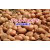 今年洋芋价格13987485087|云南省会泽县驾车乡