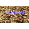 出售当归种子,质量保证,签保底回收合同13987235380