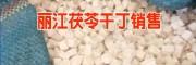 云南茯苓信息网