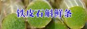 产地铁皮石斛鲜条(图片)