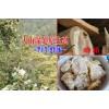 云南百花蜜养殖基地&云南最好的蜂蜜在哪里&15812056564