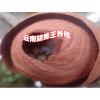 马蜂技术·云南三农胡蜂养殖技术—云南哪里胡蜂养殖公司传授技术