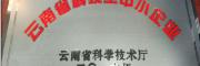软籽石榴树苗龙头企业供应(附图)