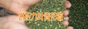 宾川博达花椒种植专业合作社