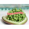 苦子果又叫苦茄- 广南县坝美那力苦子果种植基地供应