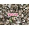 云南白芨种植基地#紫花三叉白芨种子图片