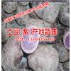 红薯目前已大量上市销售#红薯价格多少一斤@