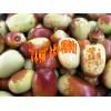 云南金丝小枣哪里有卖◆云南金丝小枣成熟时间18608785999