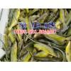 四川仁寿县哪里有淡水鱼苗销售@淡水鱼苗最多的地方
