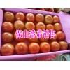 保山番茄多少钱一斤#云南保山蕃茄供应商15287555151