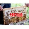 出售蜂蜜 云南普洱岩蜂蜜087164155848