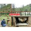 云南普洱江城县哪里蜂蜜销售?江城蜂蜜多少钱一斤
