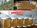 蜂蜜批发厂家