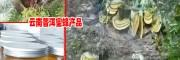 缪思位-促蜂农增收-云南省蜂业技术学会常务理事单位