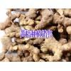 黄精种子#四川产地黄精种植基价格