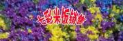 红河屏边七彩米饭(附图)多少钱