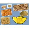 现金求购:玉米、大麦、棉(豆、菜)粕