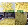 红河鲜黄姜、泡姜批发价格是多少?文山干姜片批发厂家