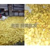 红河鲜姜、黄姜产地价格,11月供应信息,文山黄姜产地