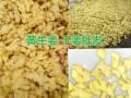文山黄姜产地11月供应信息,红河屏边鲜姜、黄姜产地价格