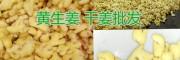 洗姜销售批发,红河屏边洗马塘姜厂出售洗姜