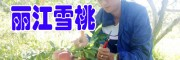 丽江雪桃佳种植时间#雪桃多少钱一斤_丽江雪桃公司报价中心
