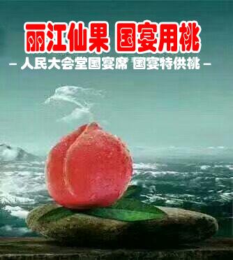 丽江雪桃育苗公司