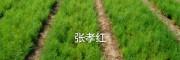 云南青野中药材开发有限公司[15368086541]