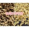 曲靖洗姜加工厂-泡姜销售批发-13577392283