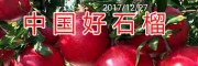 云南黑籽石榴苗-滇泽王黑籽石榴苗/18869889661