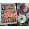 昆明乳鸽养殖场-昆明乳鸽价格/昆明新鲜速冻乳鸽让供应