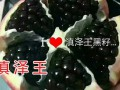 会泽高老庄农业庄园有限公司 (734播放)