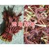 供应香椿树苗-楚雄腾烊中草药种植有限公司
