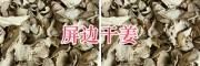 屏边干姜片价格_13808775717-云南干姜片供应