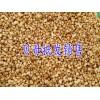 贝母多少钱一斤-贵州贝母价格/毕节贝母销售